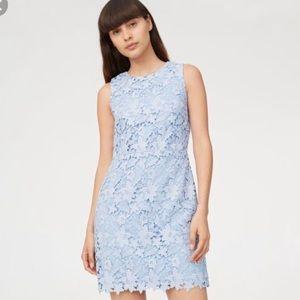 Club Monaco Klina Lace Shift Dress